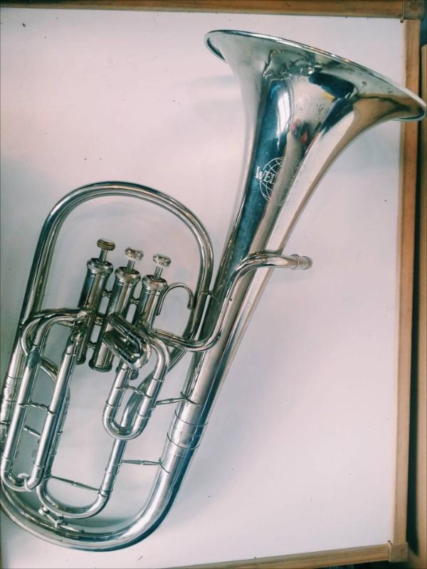 iceni-horn