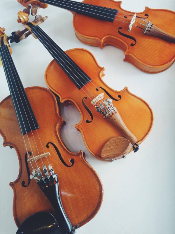 iceni-violin