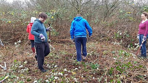 Filigree Communications volunteering for Wild Cat Wilderness, Catford