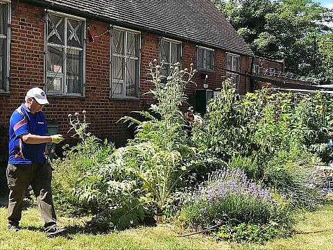 Calling All Green-Fingered Residents – Your Local Community Garden Needs YOU!