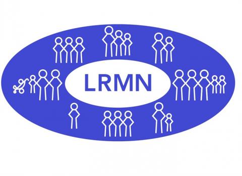 Lewisham Refugee and Migrant Network – Trustees wanted