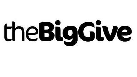 The Big Give's Christmas Challenge
