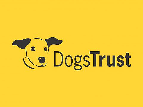 Advice from Dogs Trust