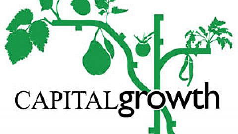 Capital Growth – Growing Connections