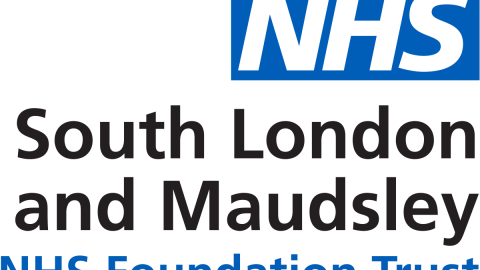 South London and Maudsley – Patient and Carer Race Equality Framework