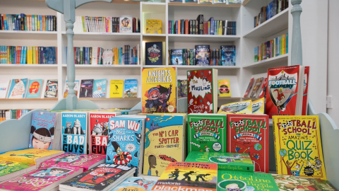 Raising equality and diversity of representation and access in children's books.