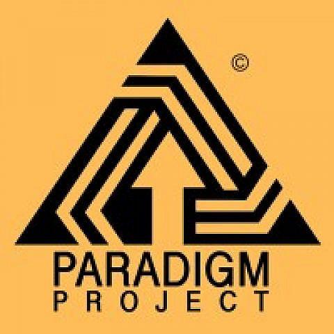 Lewisham Charity Paradigm Project Prepare to Launch their 'Bridge The Gap Report'